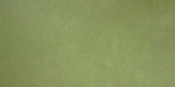 Apavisa Anarchy green natural 30x60