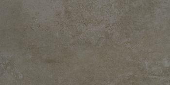 Apavisa Evolution moss lappato 30x60