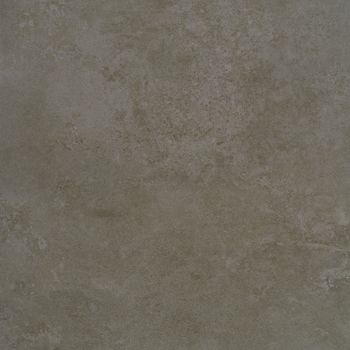 Apavisa Evolution moss natural 60x60