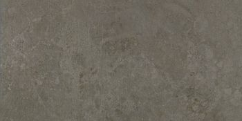 Apavisa Evolution moss striato 30x60