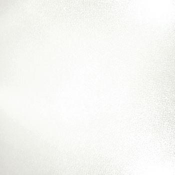 Apavisa Fiberglass white lappato 60x60