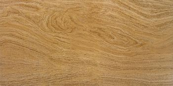 Apavisa OAK ochre natural 60x120
