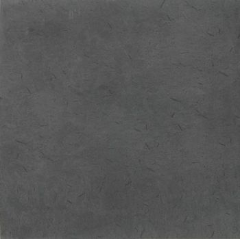 Apavisa Otta antracita natural 60x60