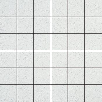 Apavisa Terratec White Natural Mosaico 5x5