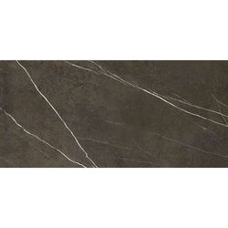 Pietra grey polished 119,3x260