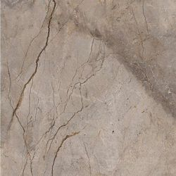Wild forest grey pol mix 119,3x119,3