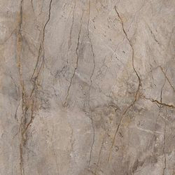 Wild forest grey nat mix 119,3x119,3