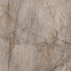 Wild forest grey polished 59,55x59,55
