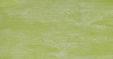 Apavisa Vintage green natural 45x90